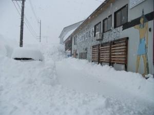 DSCF0308雪2