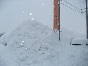 DSCF0311雪5