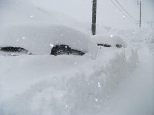 3DSCF0309雪