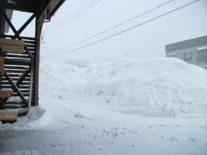 DSCF0307雪1